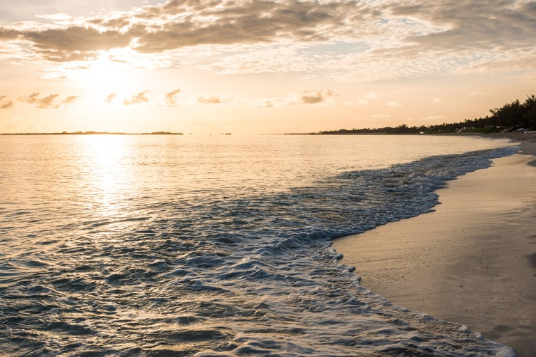 Wandering Tides Lost in Paradise
